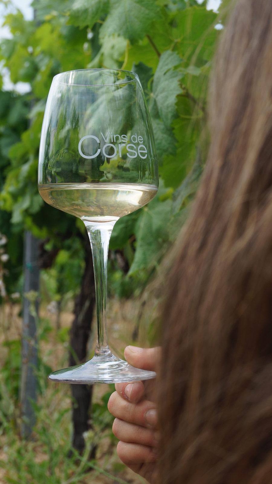 Les vins en Corse : une longue histoire.