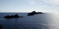 Quatre jours en Corse : des idées pour vous !