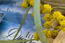 corse-tradition-pietrosella-nature